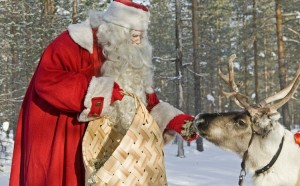 What to study to become Santa Claus - Veterinary or Biology