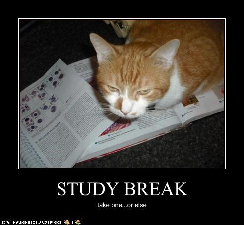 Study Hacks: Take Study Breaks