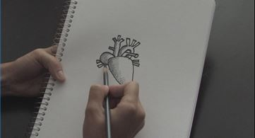 drawing the human heart